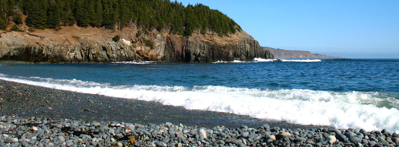 Image result for middle cove beach